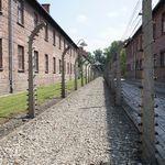 Auschwitzeyecatch